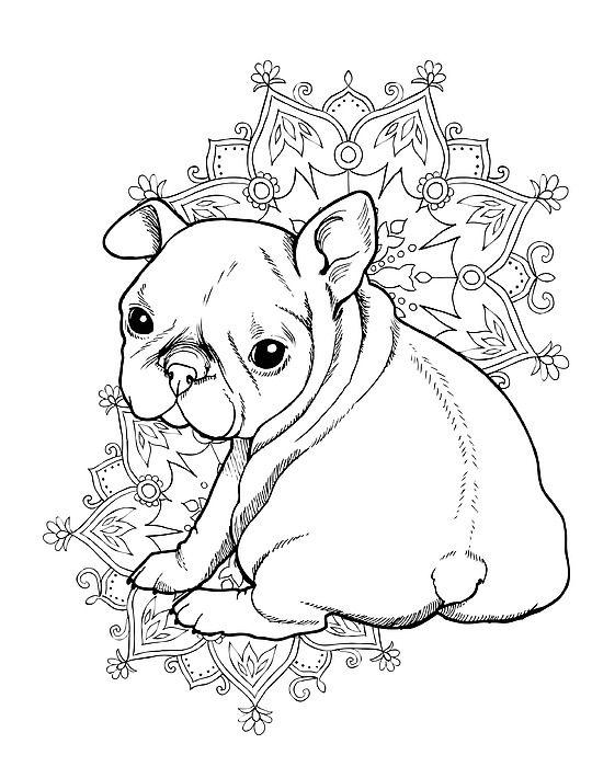 French Bulldog Puppy By Cindy Elsharouni In 2021 Dog Coloring Page Bulldog Drawing French Bulldog Drawing
