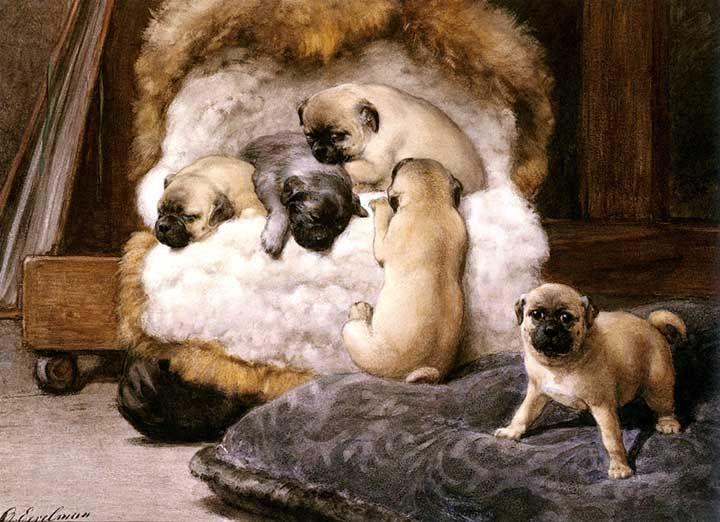 Chug Art Pugs Dog Art Baby Pug Dog