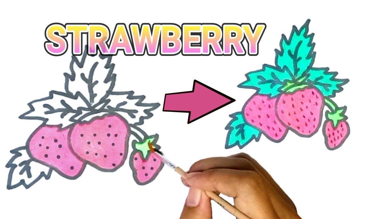 Belajar Menggambar Dan Mewarnai Buah Strawberry Untuk Si