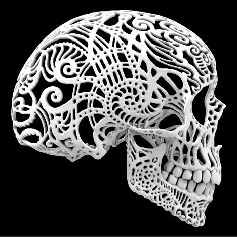 Crania Anatomica Filigre By Joshua Harker Created With A 3d