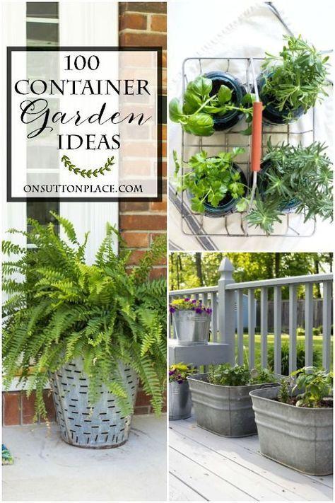 100 Container Garden Ideas | Garden ideas, Herbs and Flowers