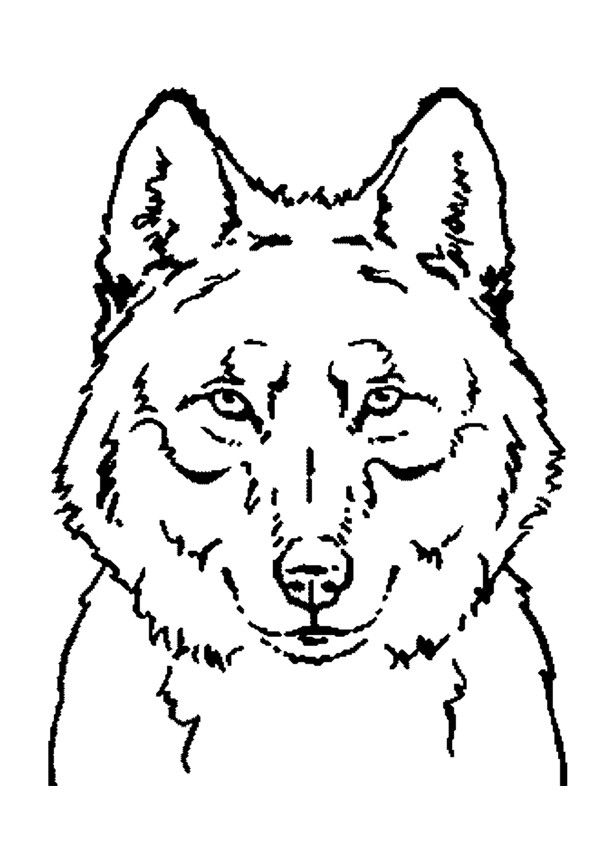 Coloriage Portrait D Un Beau Loup A Imprimer Gratuitement Ou Colorier En Ligne Sur Hellokids Com Coloriage Loup Coloriage Animaux Coloriage