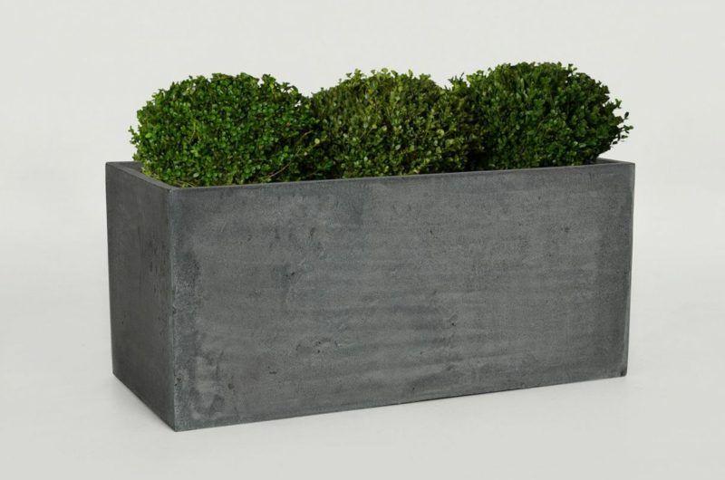 Beton Pflanzkubel Selber Machen Pflanzkubel Pflanzen Und