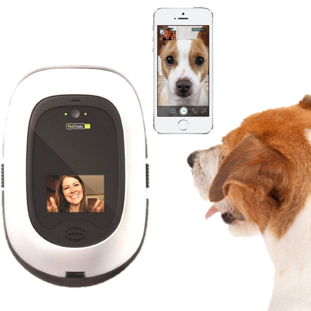 Top 7 Best Pet Camera Reviews Pet Camera Pet Daycare Dog Lover Gifts