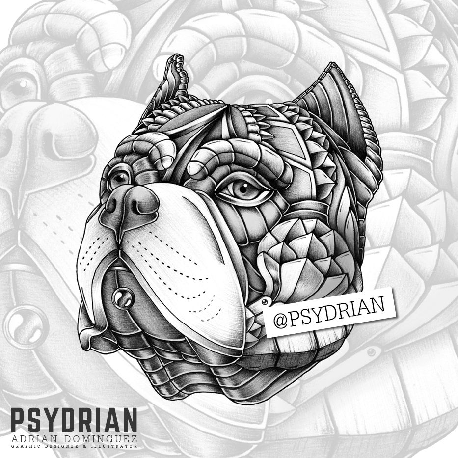Ornate American Bully On Behance American Bully Chicano Art