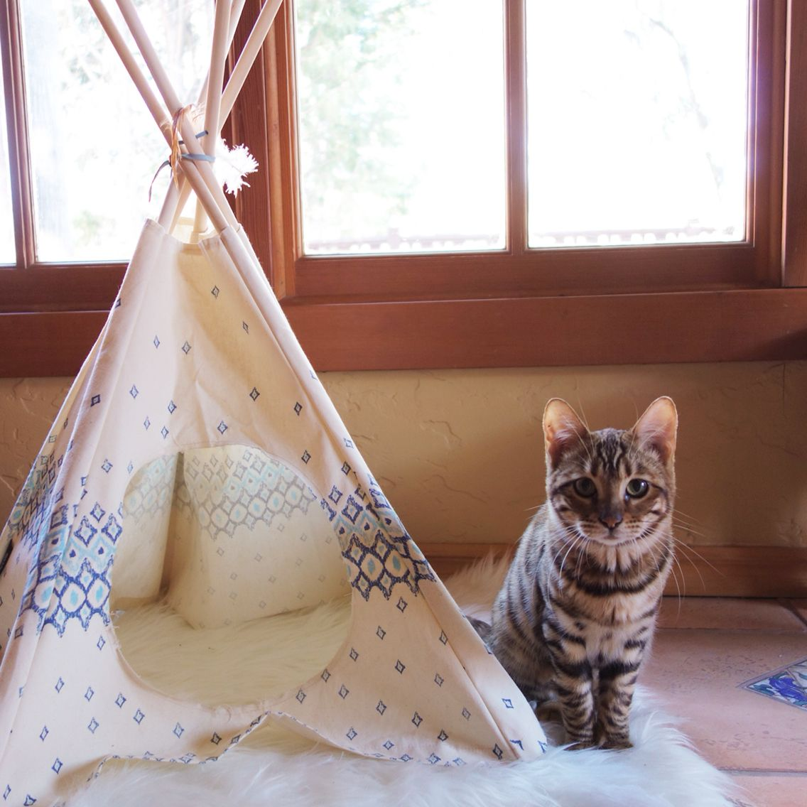 cat tipi furries. Black Bedroom Furniture Sets. Home Design Ideas