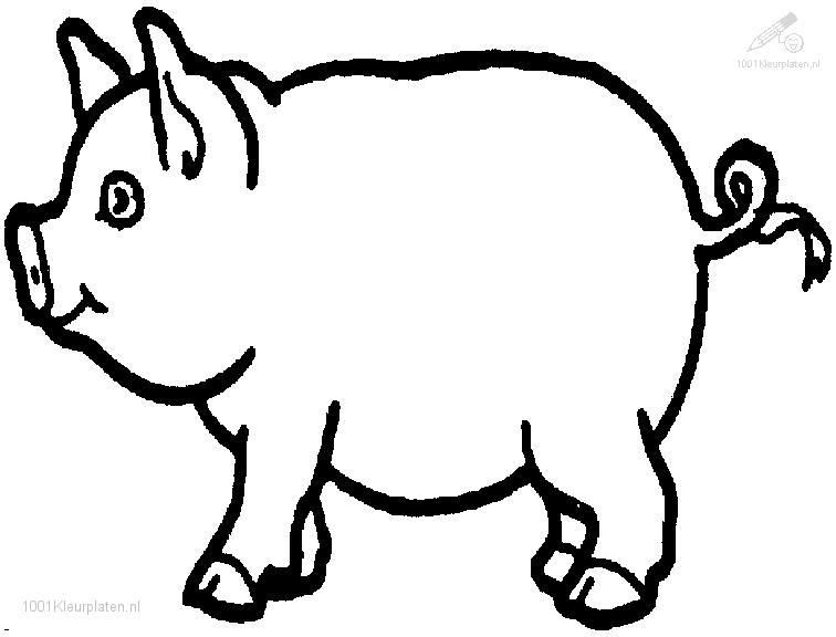 pig drawings | 1001 COLORINGPAGES : Animals >> Pig >> Pig Coloring ...