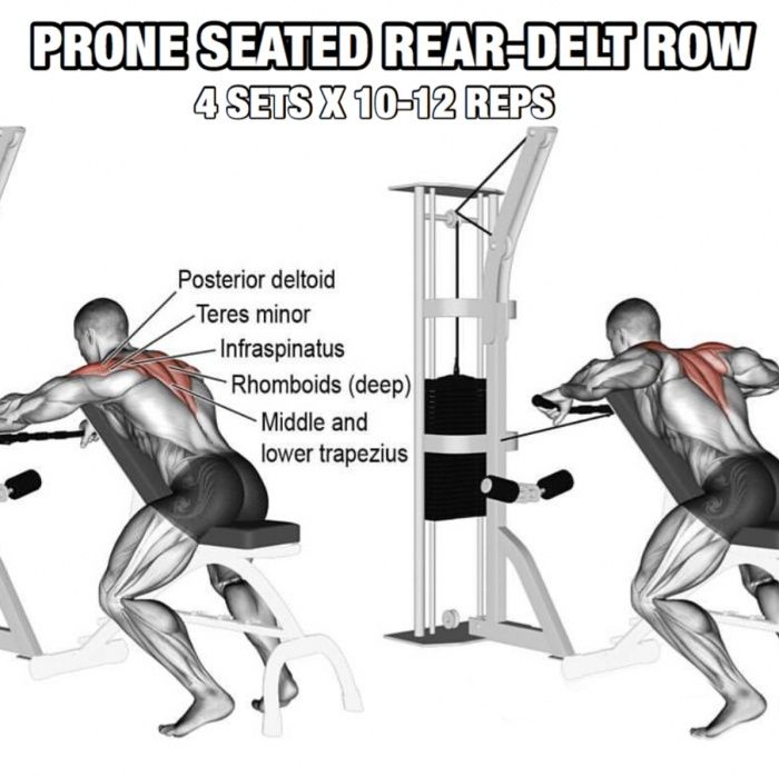Bowflex Revolution Seated Lat Row: Back Workout But Slightly Different Part 1! Prone Seated