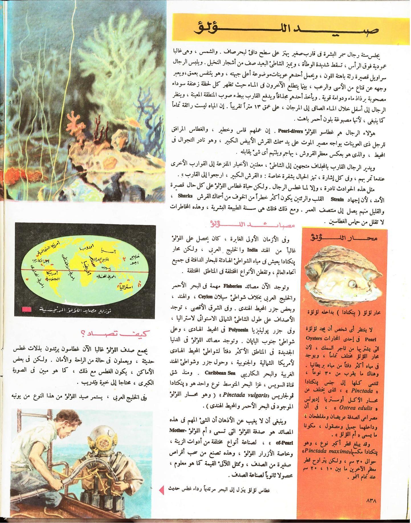 مجلة المعرفة Book Cover Books Ecology