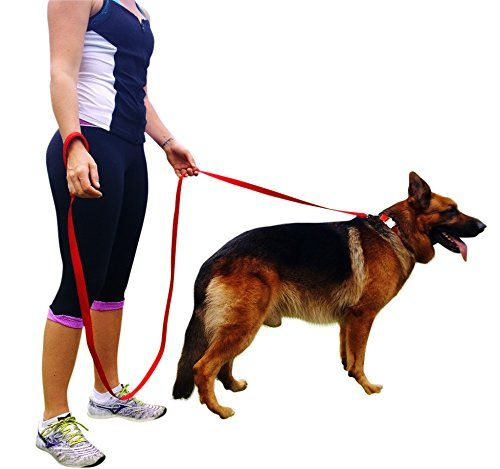Amazon Com Quirk Ferg 8 Ft Long Extra Strong Red Dog Leash