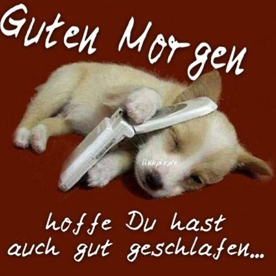 Pin Von Annett Kretschmer Auf Guten Morgen Guten Morgen Lustig