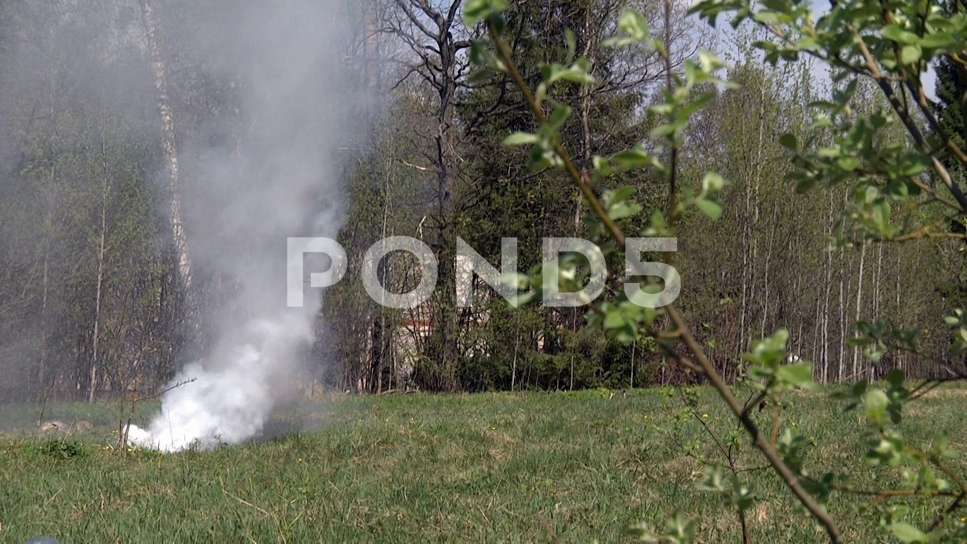 Smoke from fire in the forest. Stock Footage #AD ,#fire#Smoke#forest#Footage