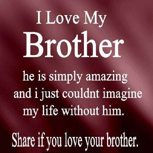 I Love My Brother Quotes   Motivation Quotes   Sayings ...