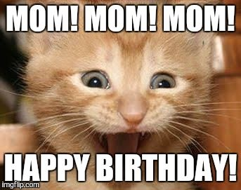 Funny Cat Meme Generator : Happy birthday meme cats birthday memes pinterest birthday