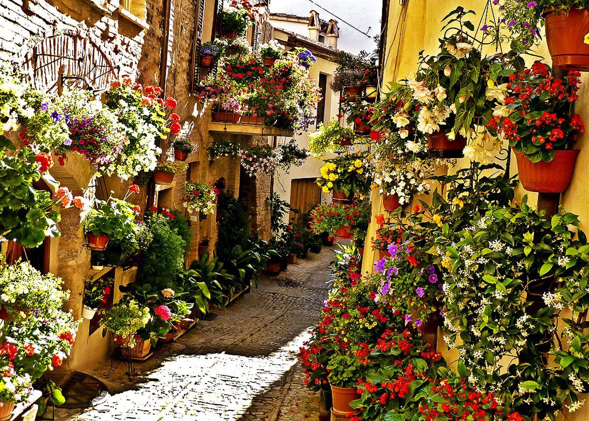 Цветочные улочки Спелло в Италии манят к себе влюбленные ...