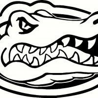 Florida Gators Coloring Page From Twistynoodle Com Sports
