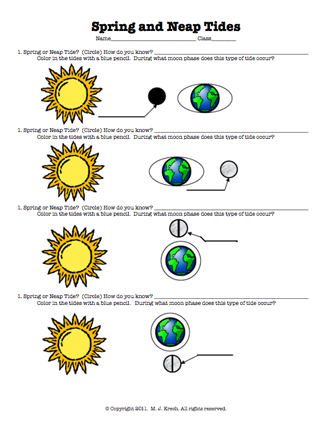Pin By Tricia Stohr Hunt On Oceans Middle School Science Activities Science Classroom Homeschool Science