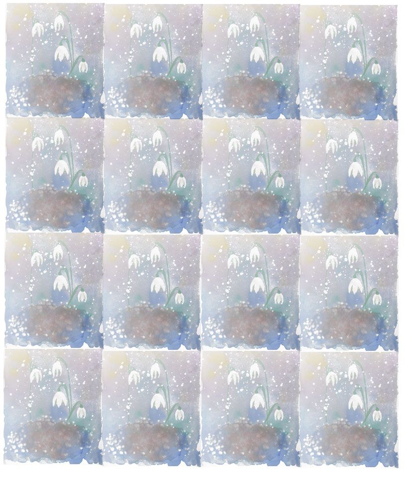 Snowdrops taken by surprise by snow- Illustration pattern