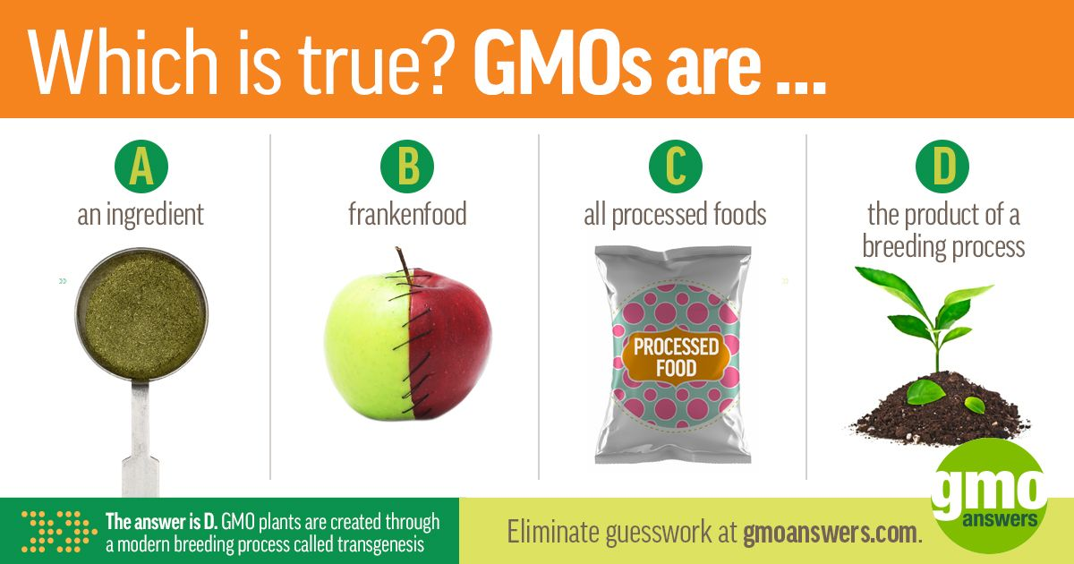 Nope Gmos Don T Frankenfood Ingredients Or All Processed Foods