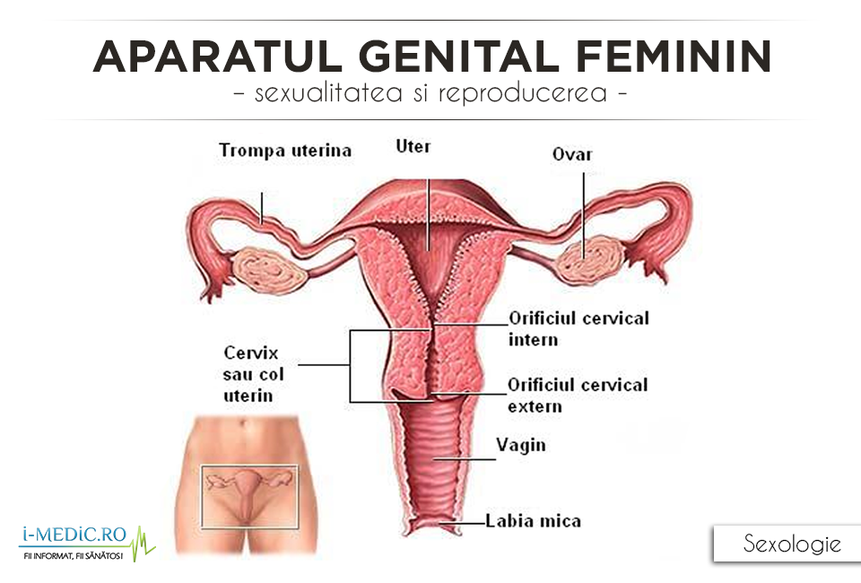 rezultatul feminin varicoză)