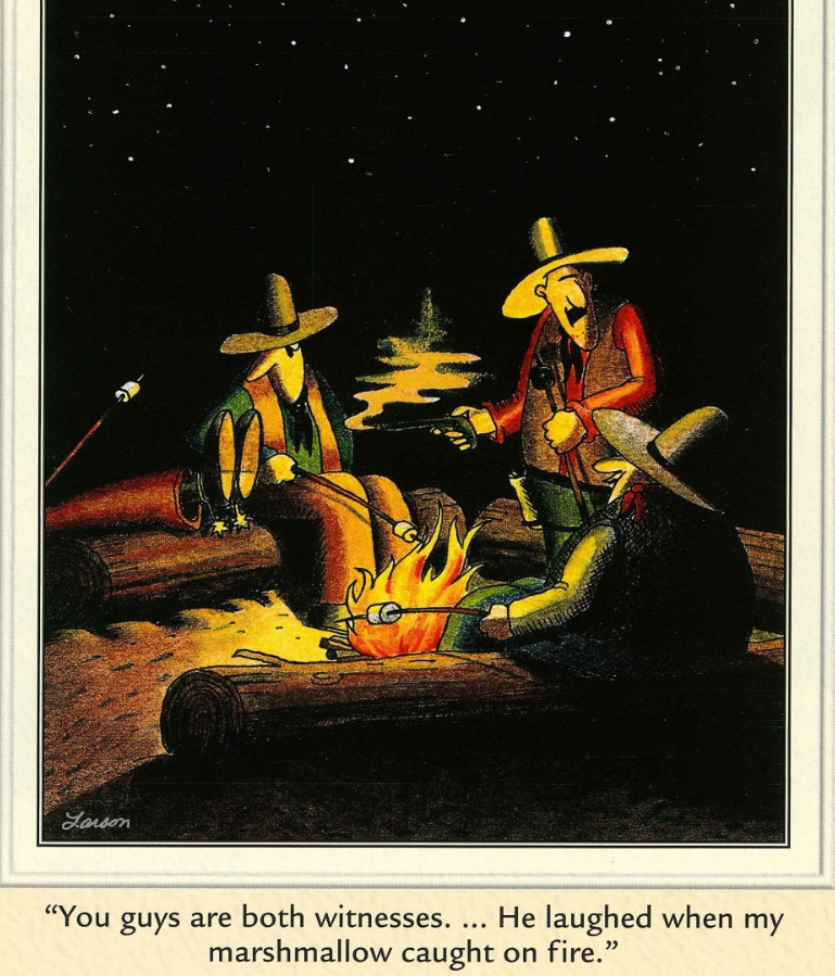 The Far Side Laughed When My Marshmallow Caught Fire Far Side Cartoons The Far Side Cartoon Jokes