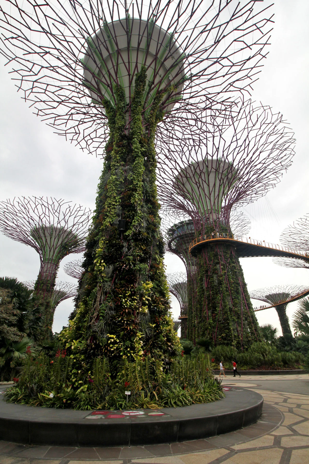 7e938b272c5513ce889a2f399f7c0907 - Gardens By The Bay If Raining