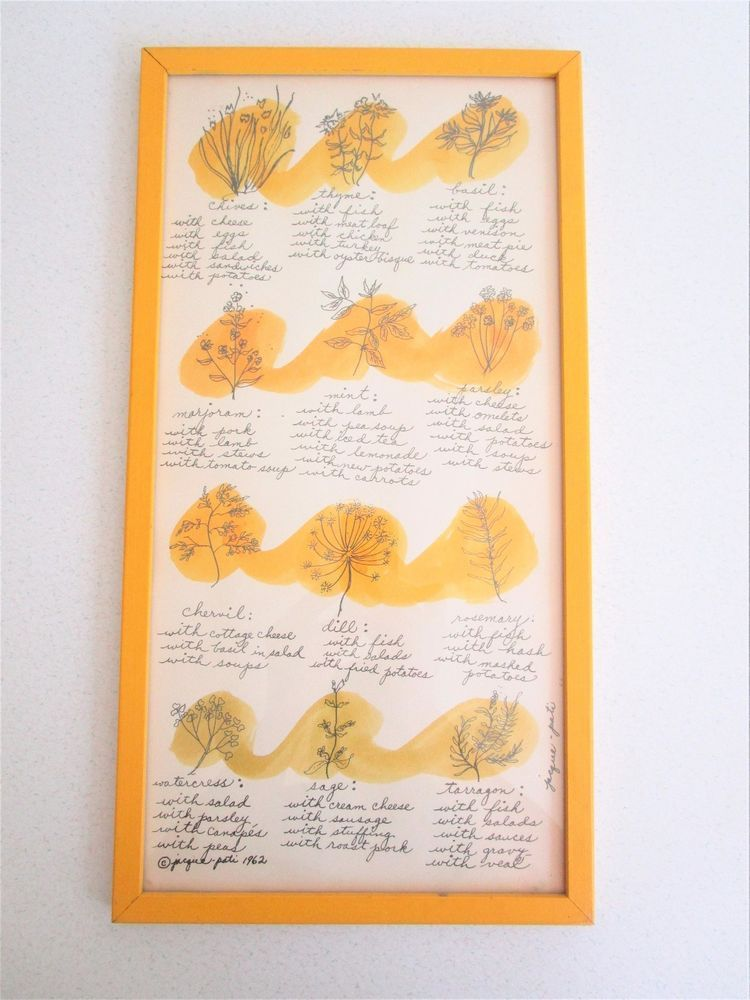 Vintage 1962 Jacque Pati Herb Compatibility Drawing Kitchen Art Yellow Spice #Vintage