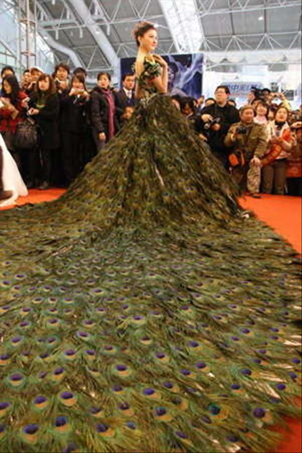 8d75a69a9b a dress... made entirely out of peacock feathers!!! say what now ...