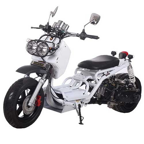 Ice Bear PMZ50-19 50cc Mad Dog Scooter | Scooters | Moped