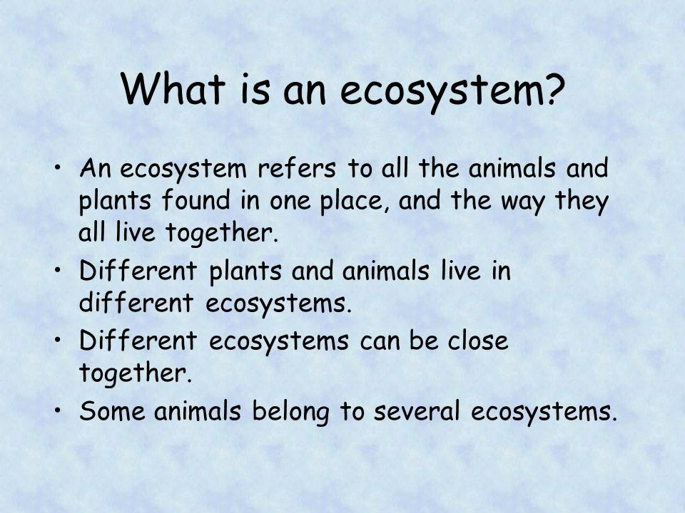 What is an ecosystem? - ThingLink