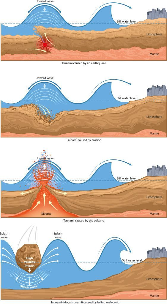 Causes of Tsunami   Natural disasters, Geography and Earth science
