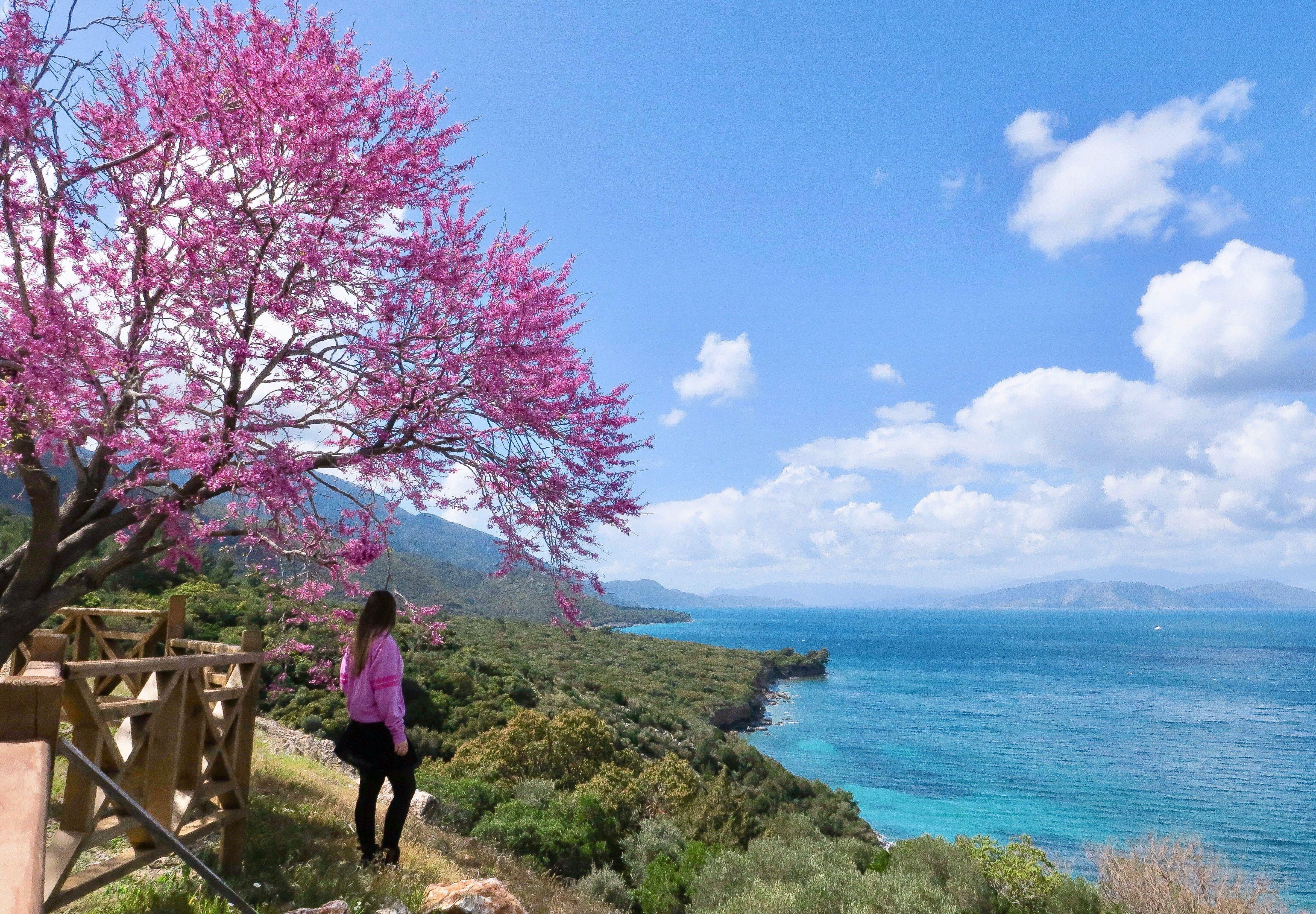 Photo of Dilek Peninsula – Büyük Menderes Delta National Park