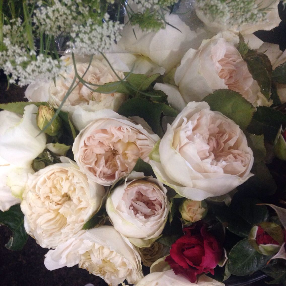 Lovely David Austin Juliette Roses In Our Studio Davidaustin Juliette Rose Flower Flower Delivery Flowers Rose