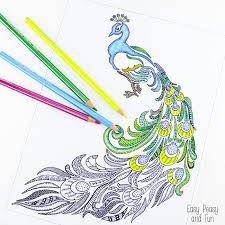 bildergebnis für peacock coloring page. | malvorlagen