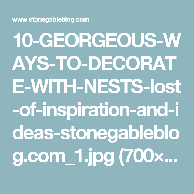 10-GEORGEOUS-WAYS-TO-DECORATE-WITH-NESTS-lost-of-inspiration-and-ideas-stonegableblog.com_1.jpg (700×1000)