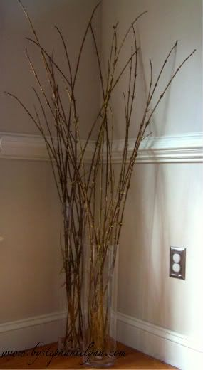 Forcing pussy willow stems