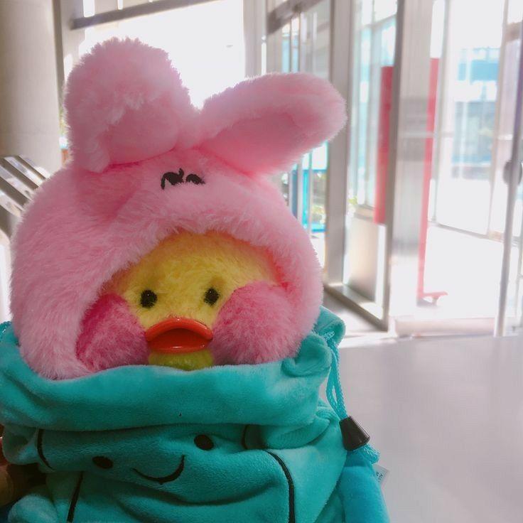 105+ duck kawaii plush ducks ducklings lalafanfan dolls 파우치 인형 aesthetic icons plushies wattpad guardado desde toy uwu 오리 stuffed