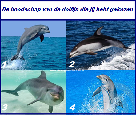 Dolfijnen boodschappen