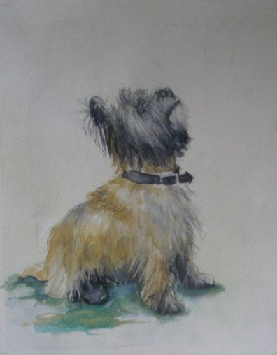 CAIRN TERRIER, Waiting For a Cookie Art Print, by Jackie