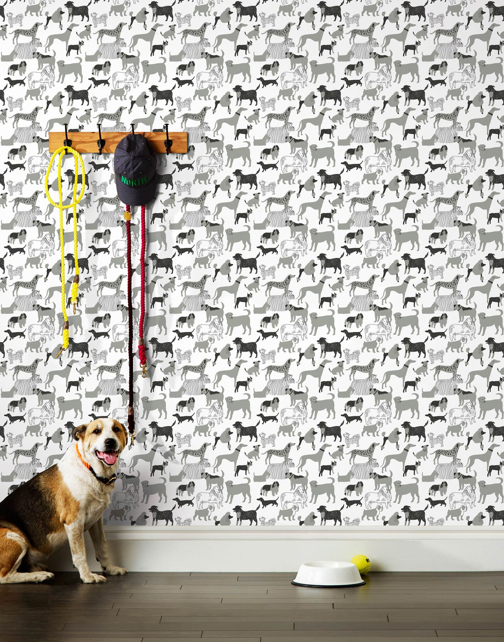 Dog Park Gray Roll Dog Wallpaper Hygge And West Diy Dog Kennel