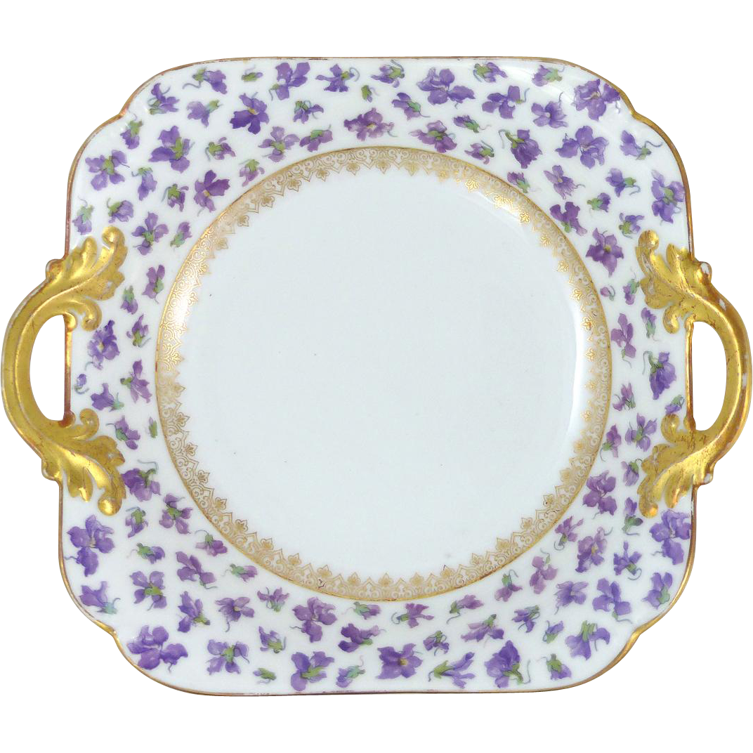 A Beautiful Delinieres Co D Co Limoges Bowl With