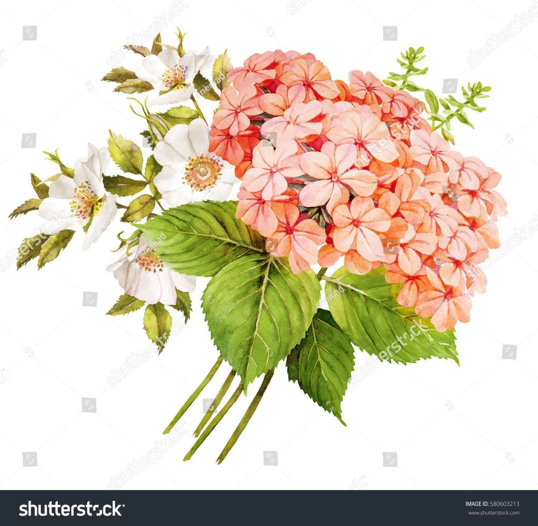 Pink white flower wedding bouquet watercolor hydrangea roses and pink white flower wedding bouquet watercolor hydrangea roses and blue jasmine illustration izmirmasajfo