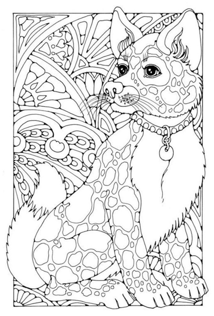 Kolorowanki Dla Doroslych Drukowane Na Plotnie Canvas Zobacz Jakie Wzory Mozemy Wydrukowac W Rozmi Animal Coloring Pages Dog Coloring Page Cool Coloring Pages