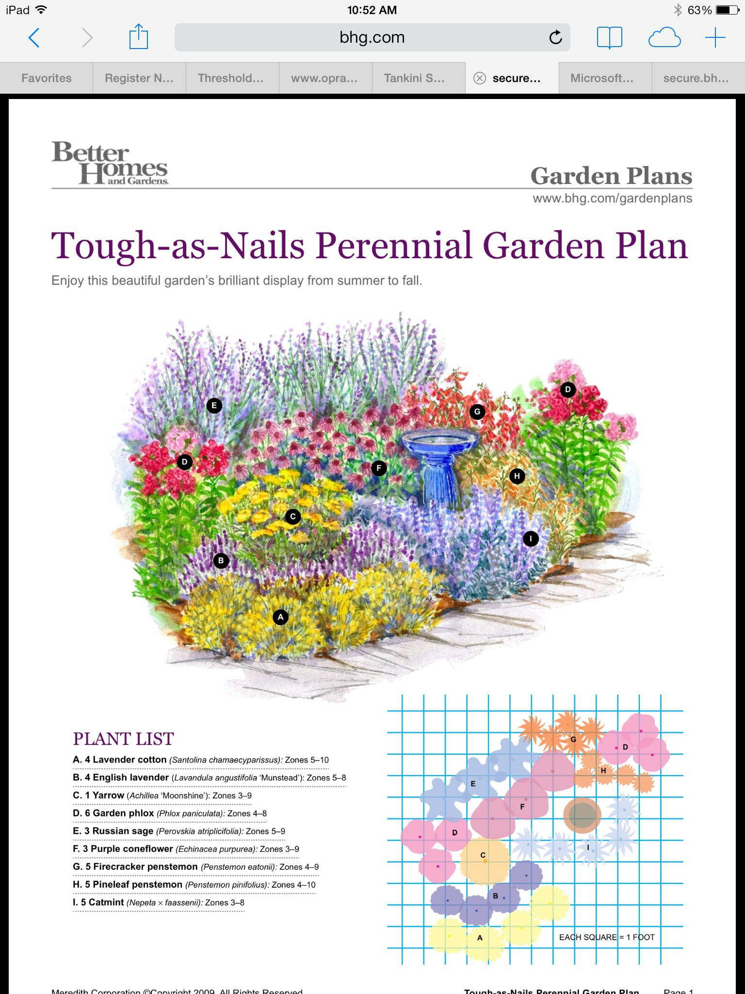 Perennial garden plans image by Lavender Brook Farm on ...
