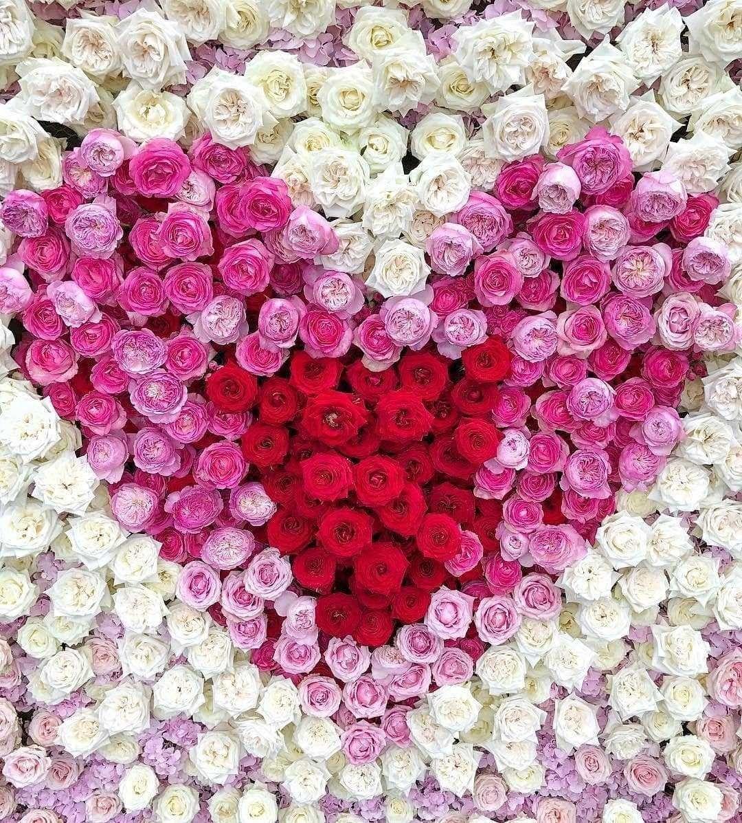 Valentines love rose floral wall heart design roses pinterest valentines love rose floral wall heart design izmirmasajfo