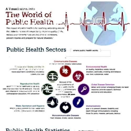into the world of public healthmy soon to be world for the next few yearsA Glimpse into the world of public healthmy soon to be world for the next few years PCH VIP ELITE...