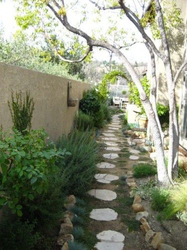 narrow long garden ideas | After photo: The opposite view. Scent ...
