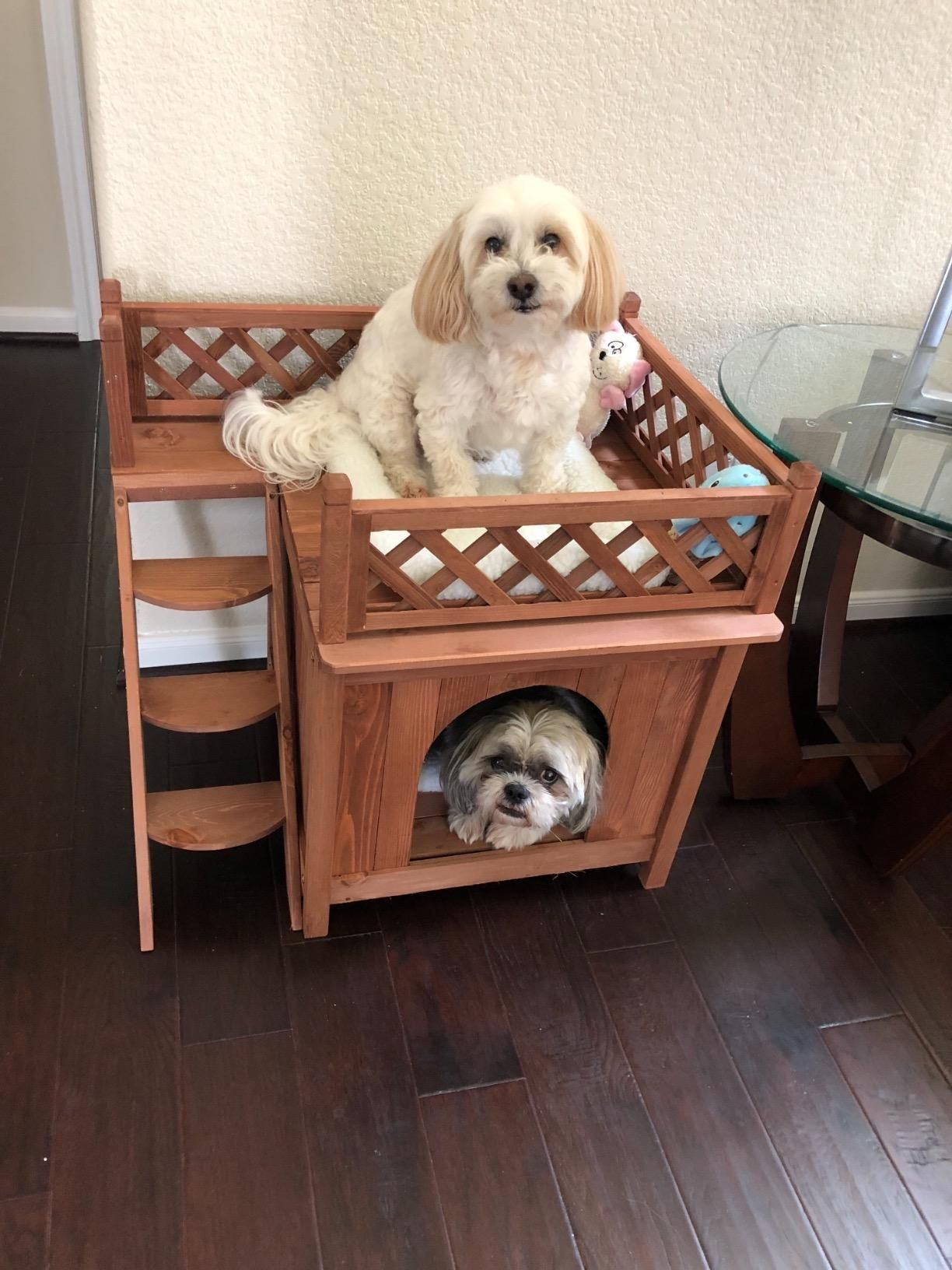 This dog house is Designed for smaller pets. Raised panel