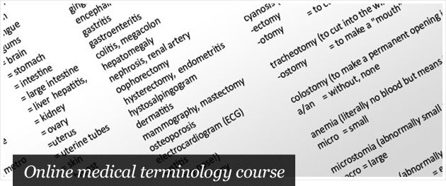Free medical terminology course | Stay Smart | Pinterest | Medical ...