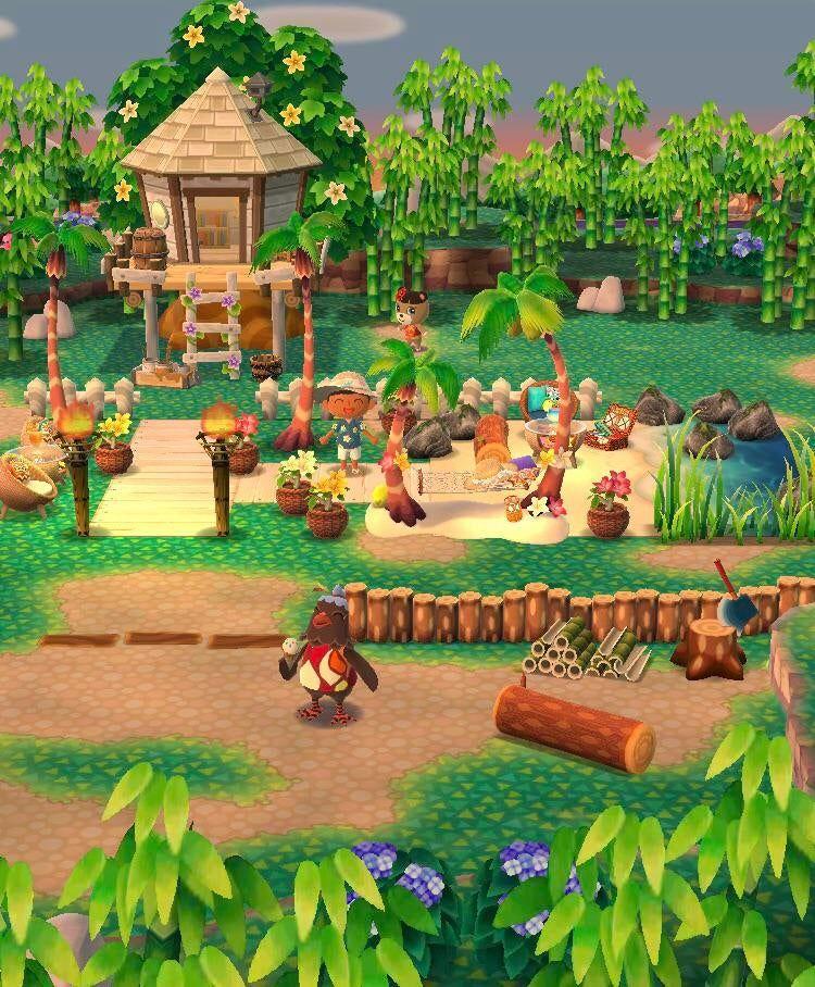 My Rainforest Resort A Nice Alternative For Those Like Me Who